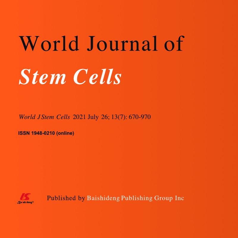 Grundlagenforschung zur Stammzelltherapie
